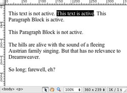 Active Text and Paragraph Blocks Example