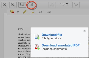 Options that appear for downloading assignment after user clicks download icon.