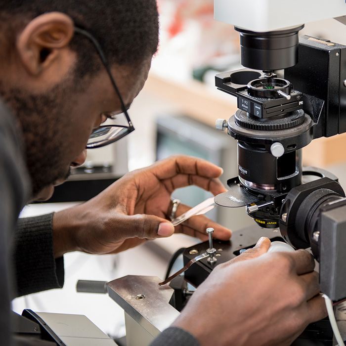 Man looks in a microscope at a sample