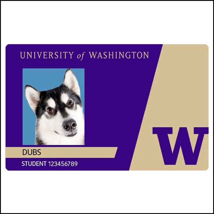 "Husky Card with photo of Dubs and ""Dubs"" as the Preferred Name"