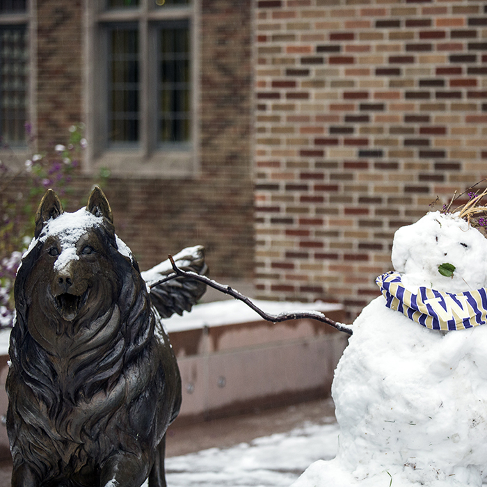 Husky sculpture with snow and a snowman built behind it