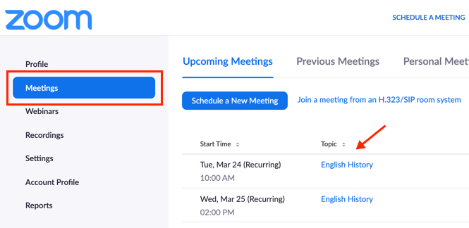 Zoom meetings page, with Meetings and meeting topic highlighted