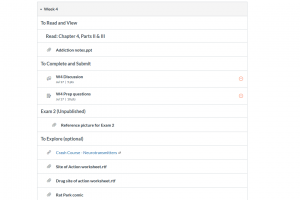 Screen capture of weekly module for week 4 use of headings for readings, assignments, and optional work.